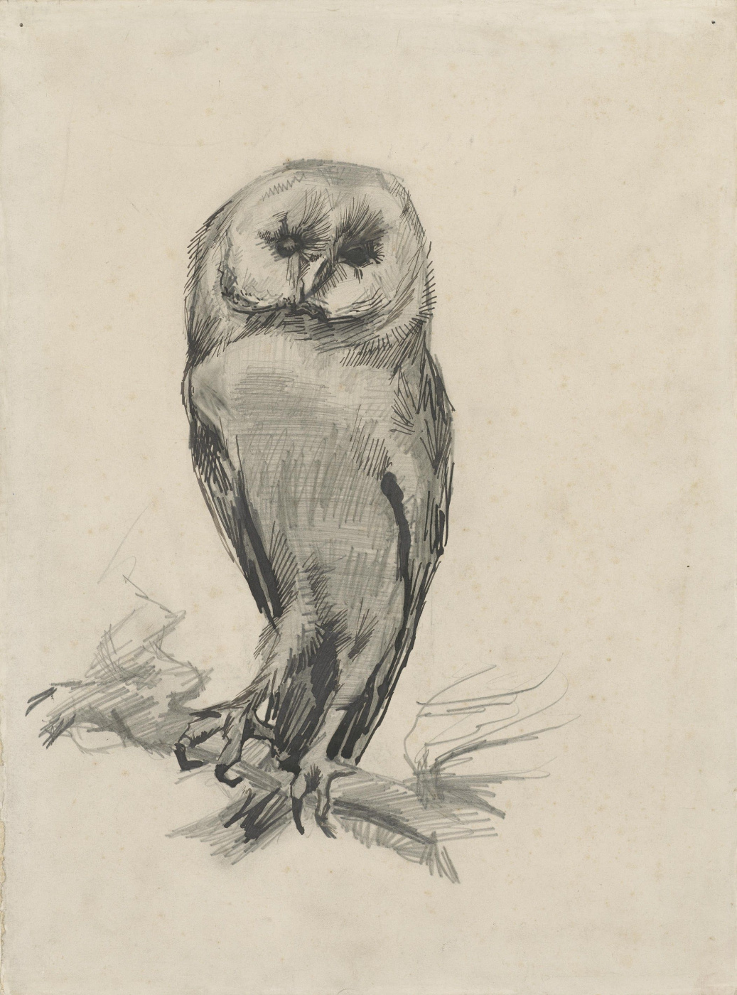 Vincent van Gogh. The barn owl, front view