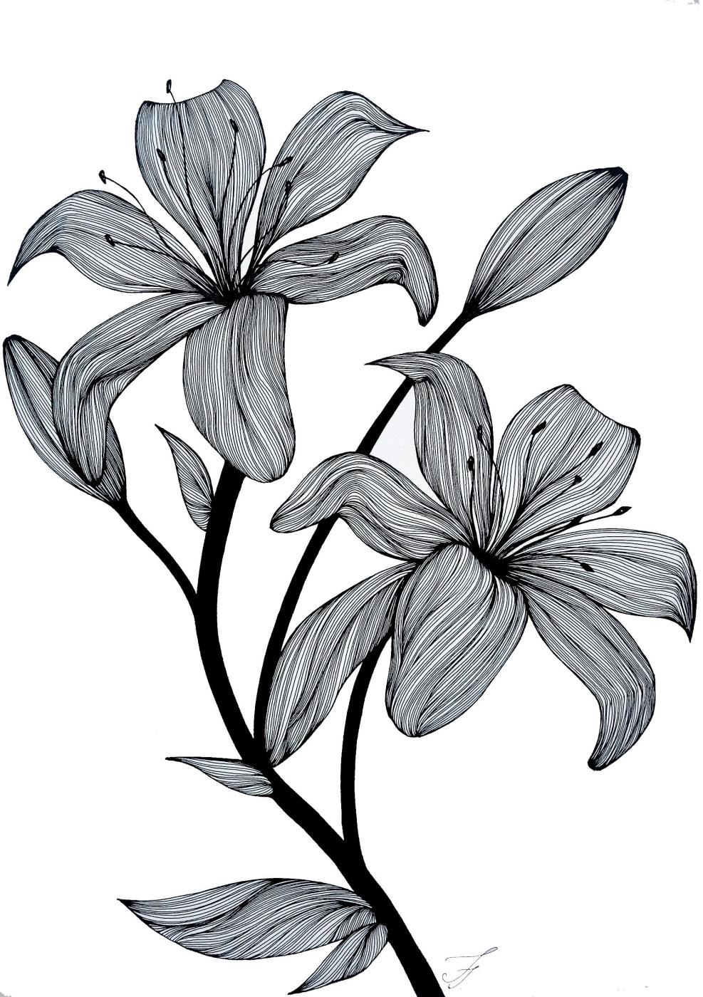 Julia Alekseevna Faberge. Lily