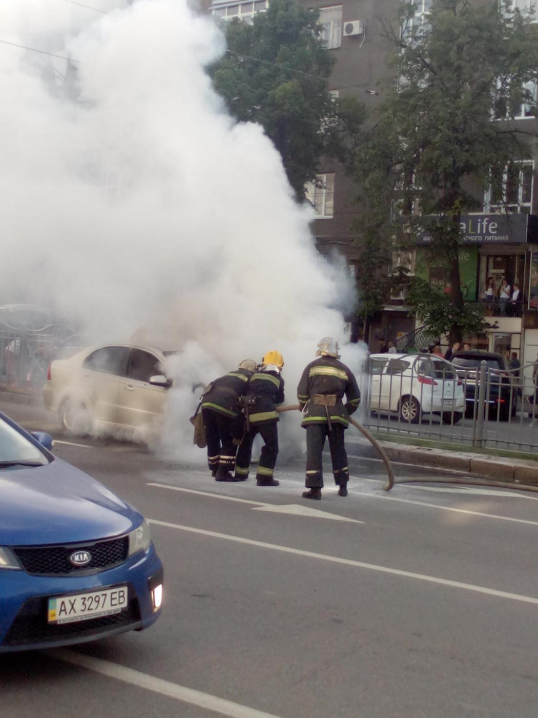 "Alexey Grishankov (Alegri). ""Taming the Fire"""