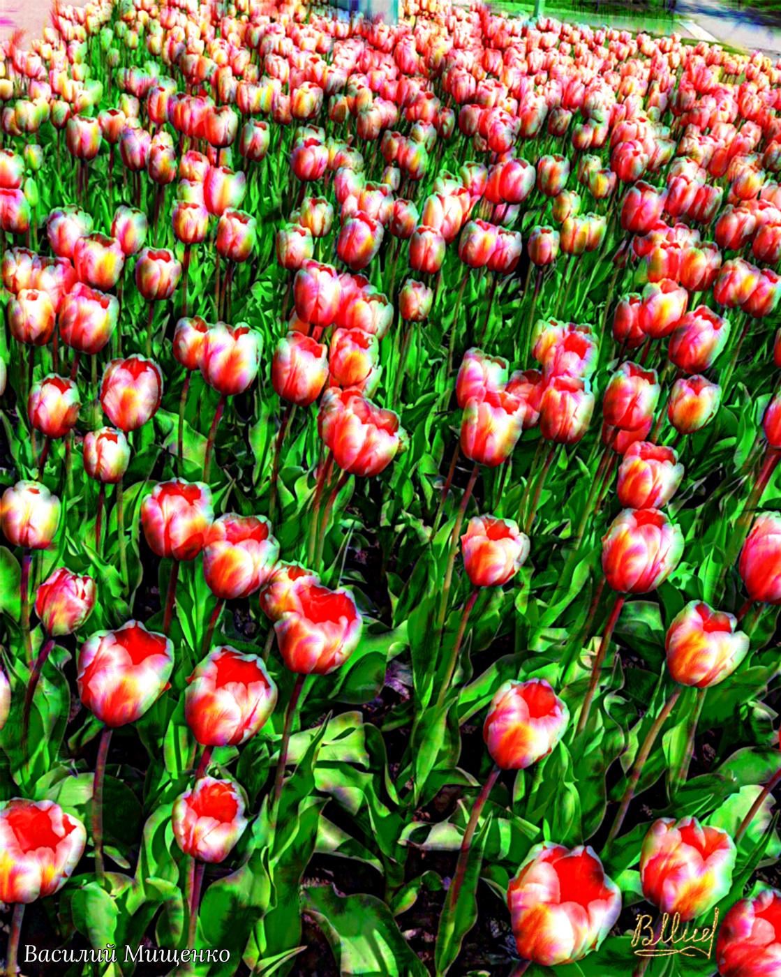 Vasiliy Mishchenko. Flowers 033