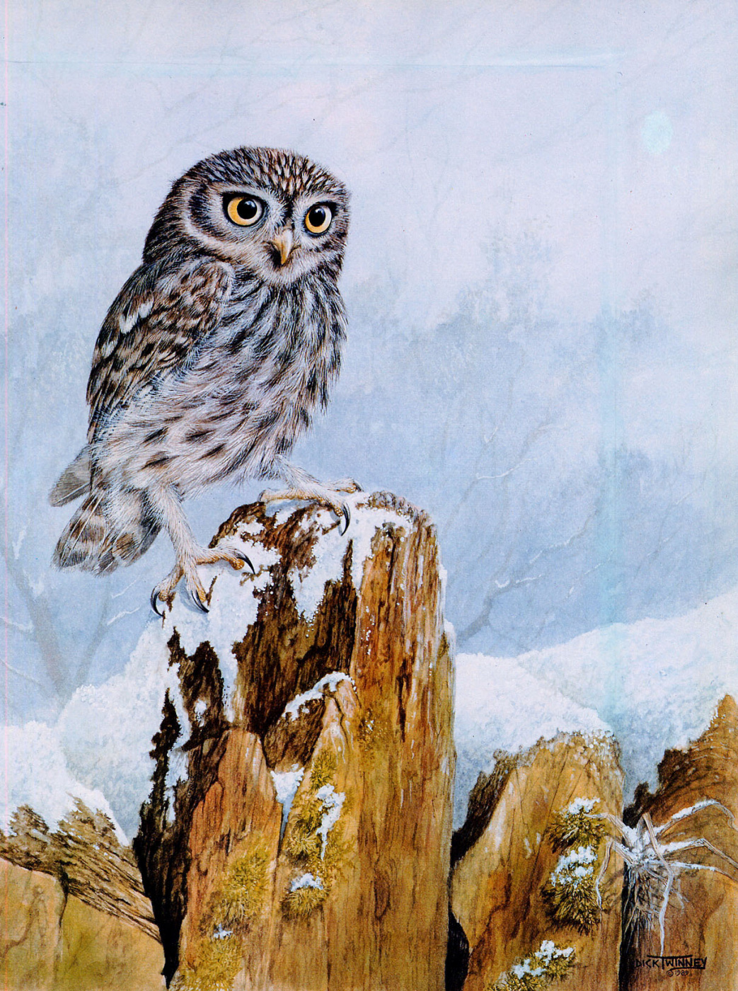 Dick Twinney. Nature 032