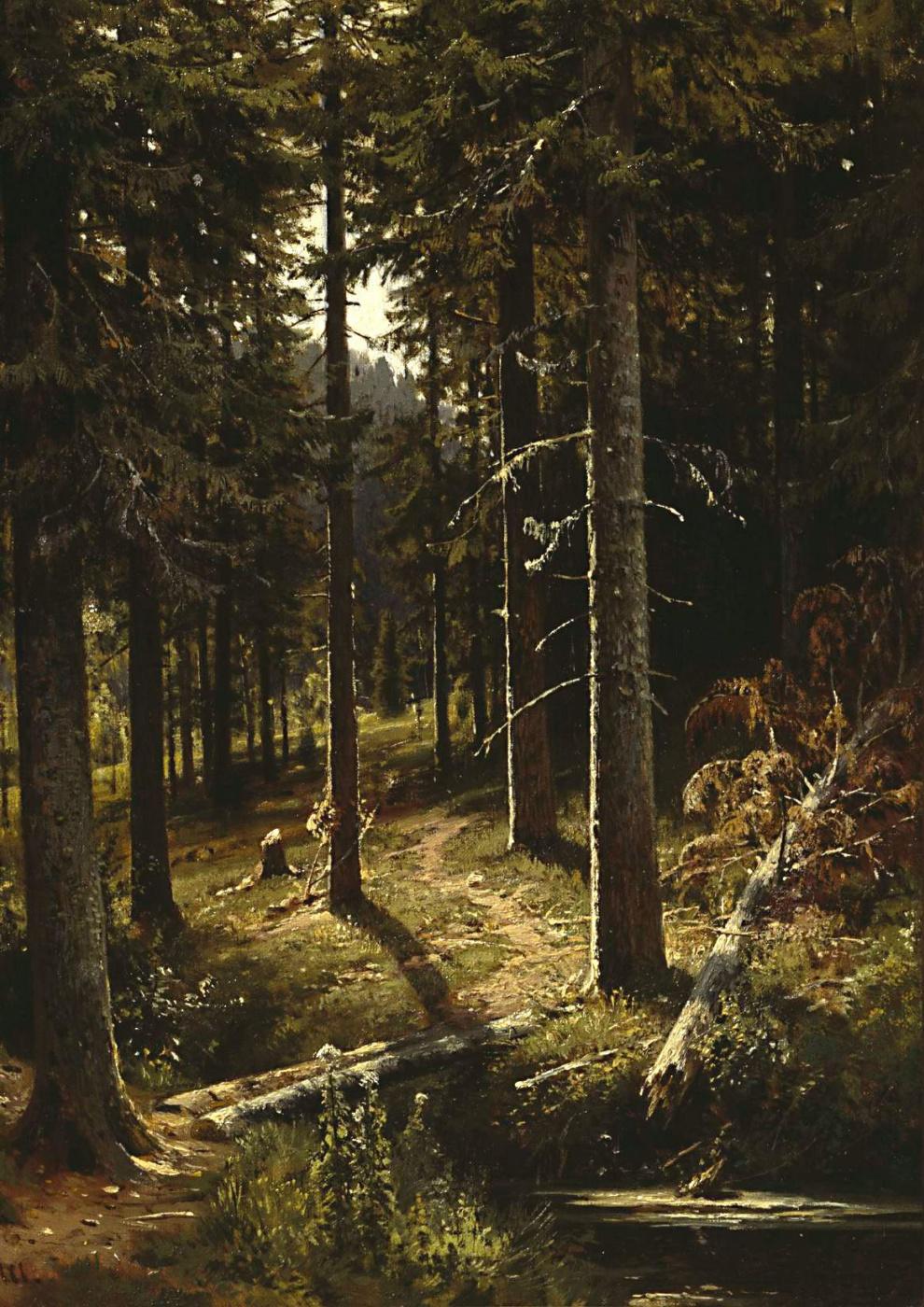 Ivan Shishkin. Forest landscape