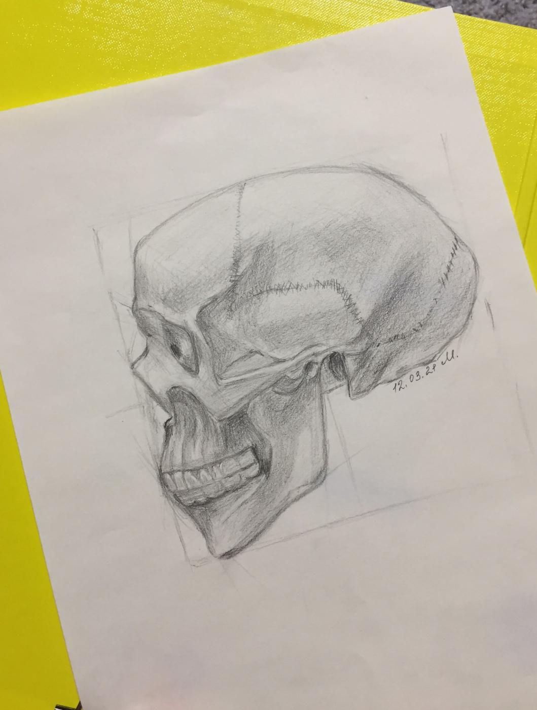 Victoria Maltseva. Skeleton profile
