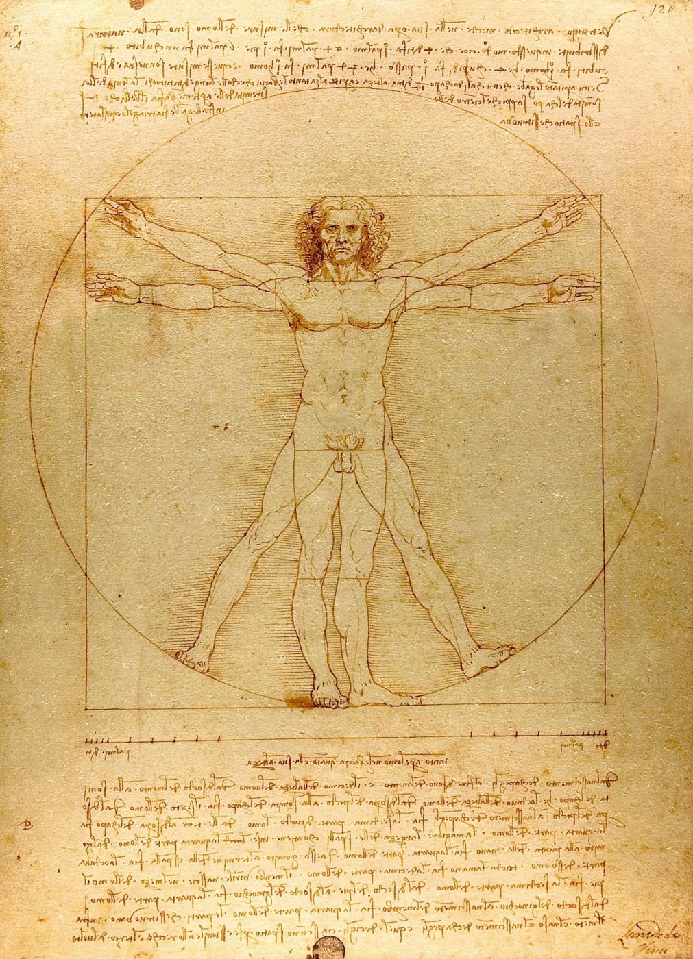 Leonardo da Vinci. Vitruvian man (the proportions of the human body)