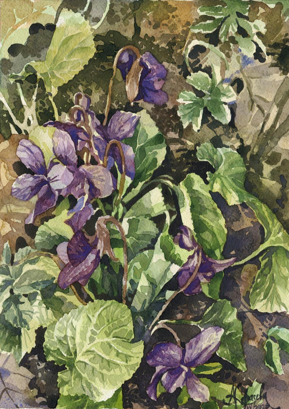 Anastasia Karaseva. The first violets