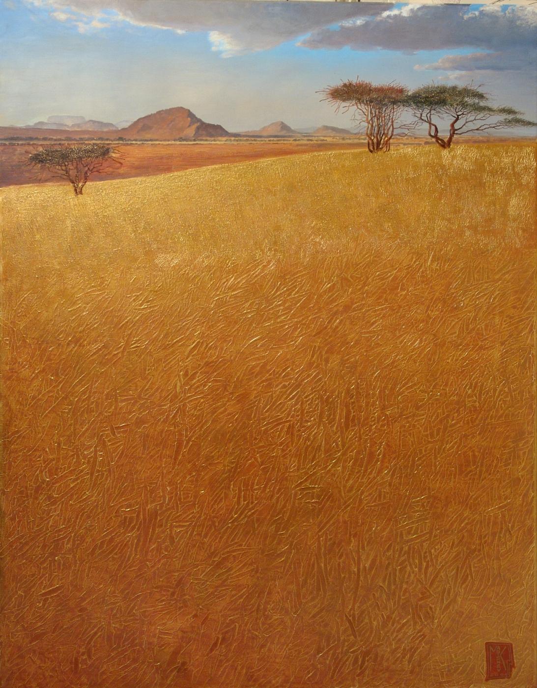 Марат Ильгизович Кадышев. Africa