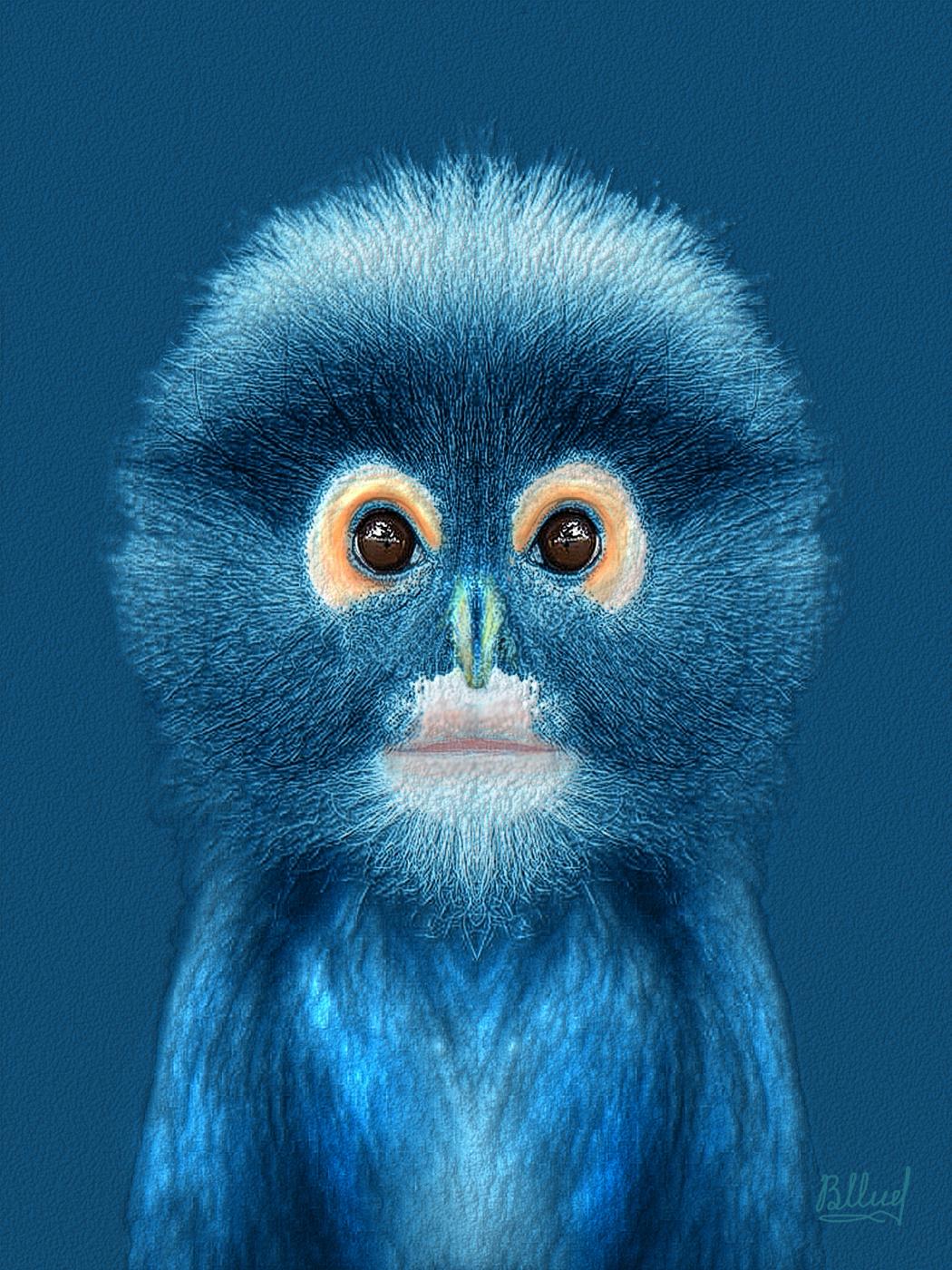 Vasiliy Mishchenko. Little monkey
