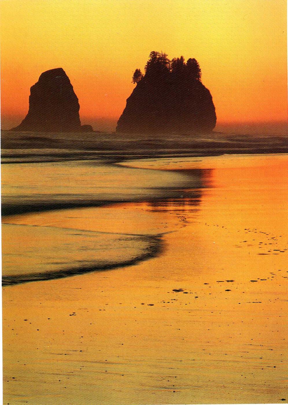 David Munich. Sunset on the sea