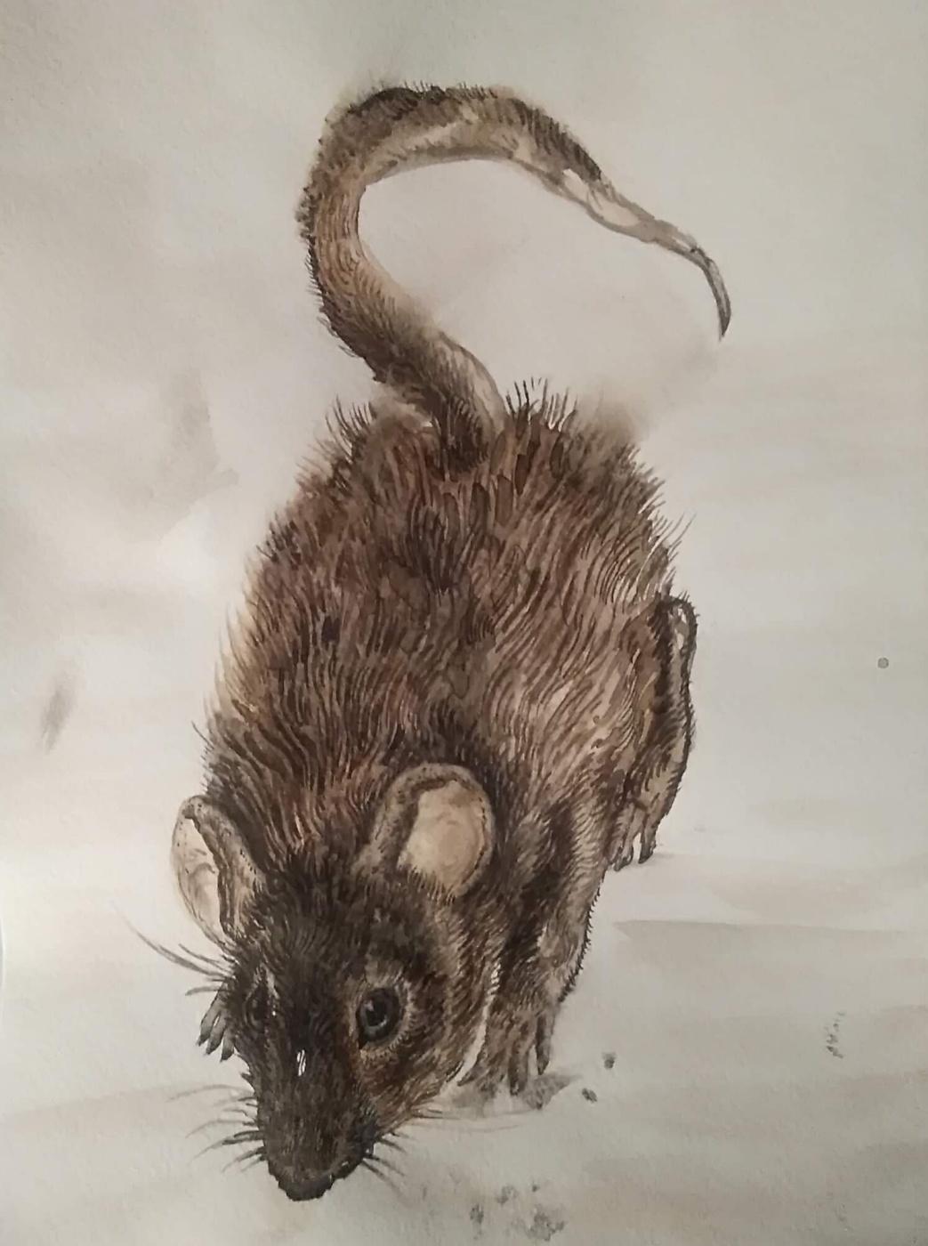 Ирина Михайловна Новикова. Mouse