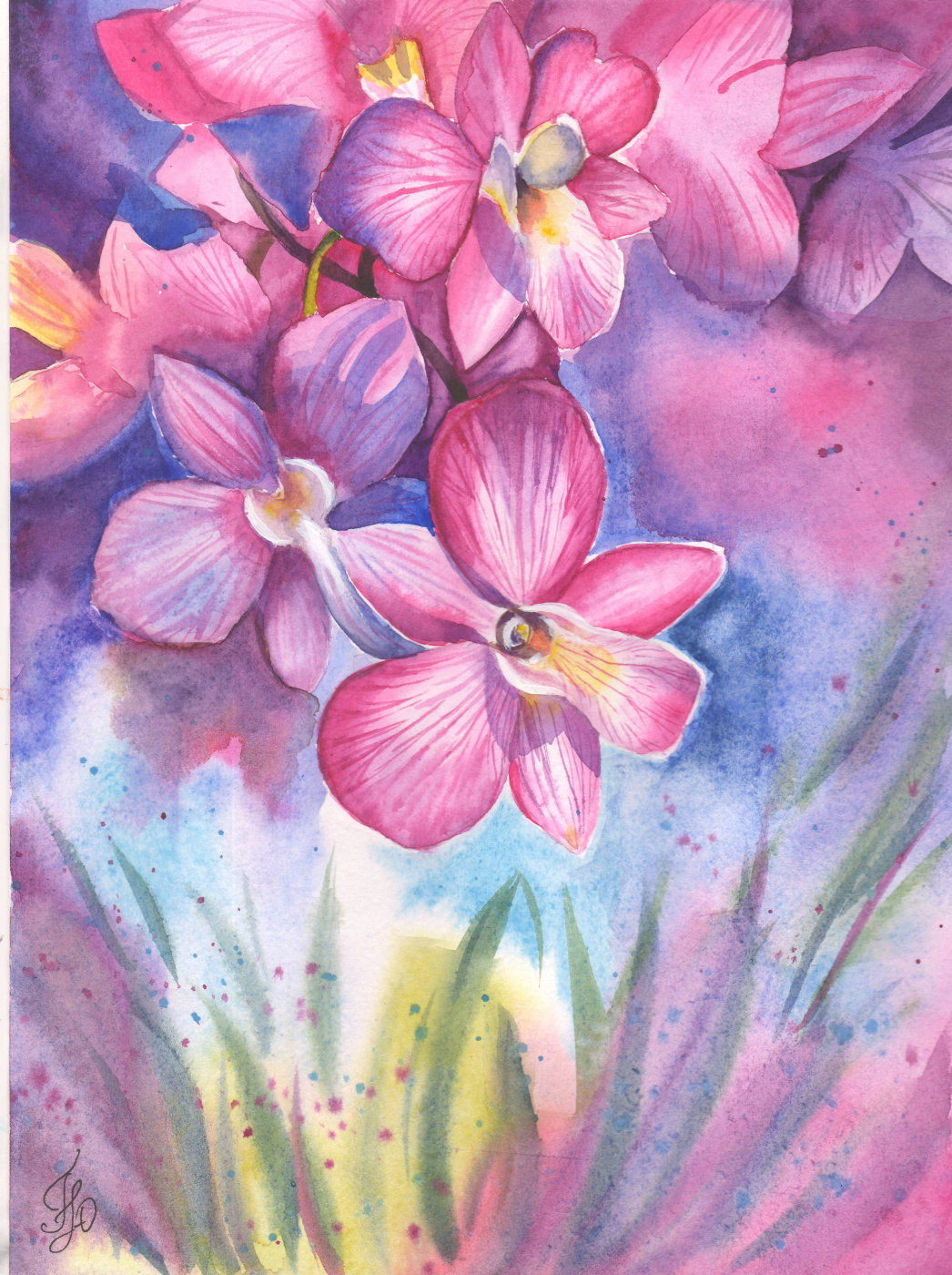 Юлия Гаврилова. Орхидеи