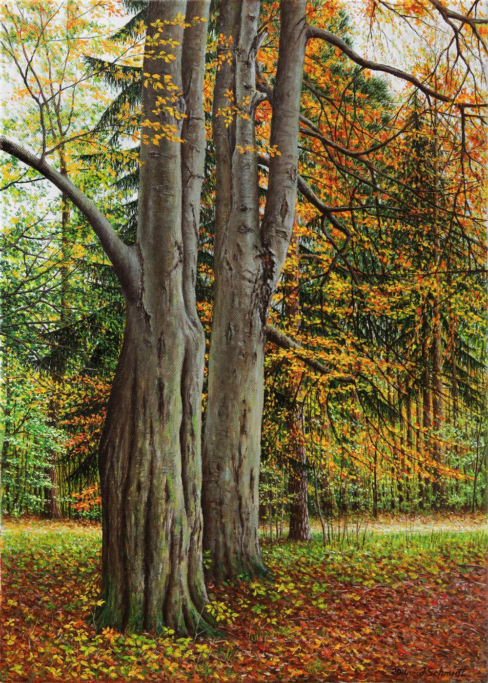 Юрген Шмидт. Autumn Park