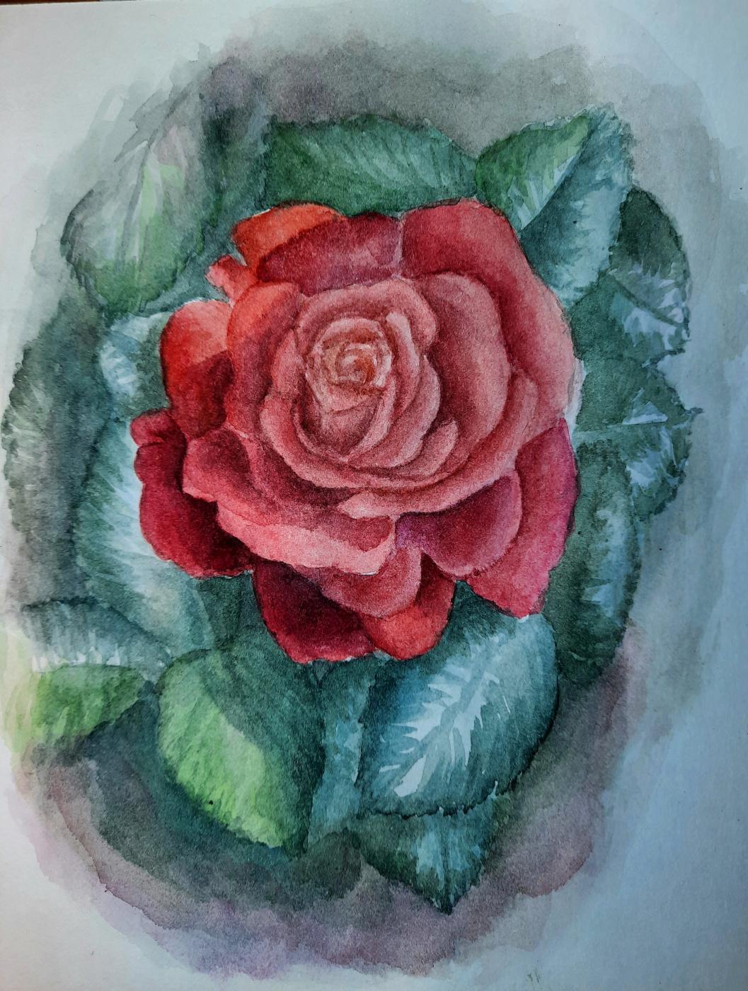Julia Sergeevna Bochkareva. Rose flower