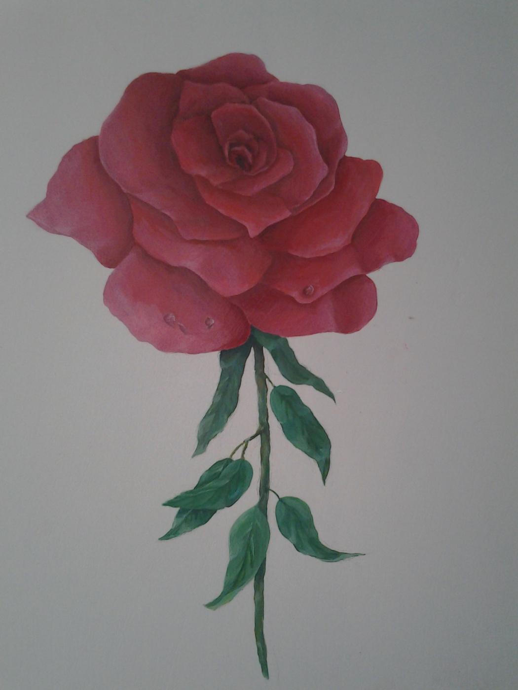 Mihran Mkrtumyan. Rose on the wall