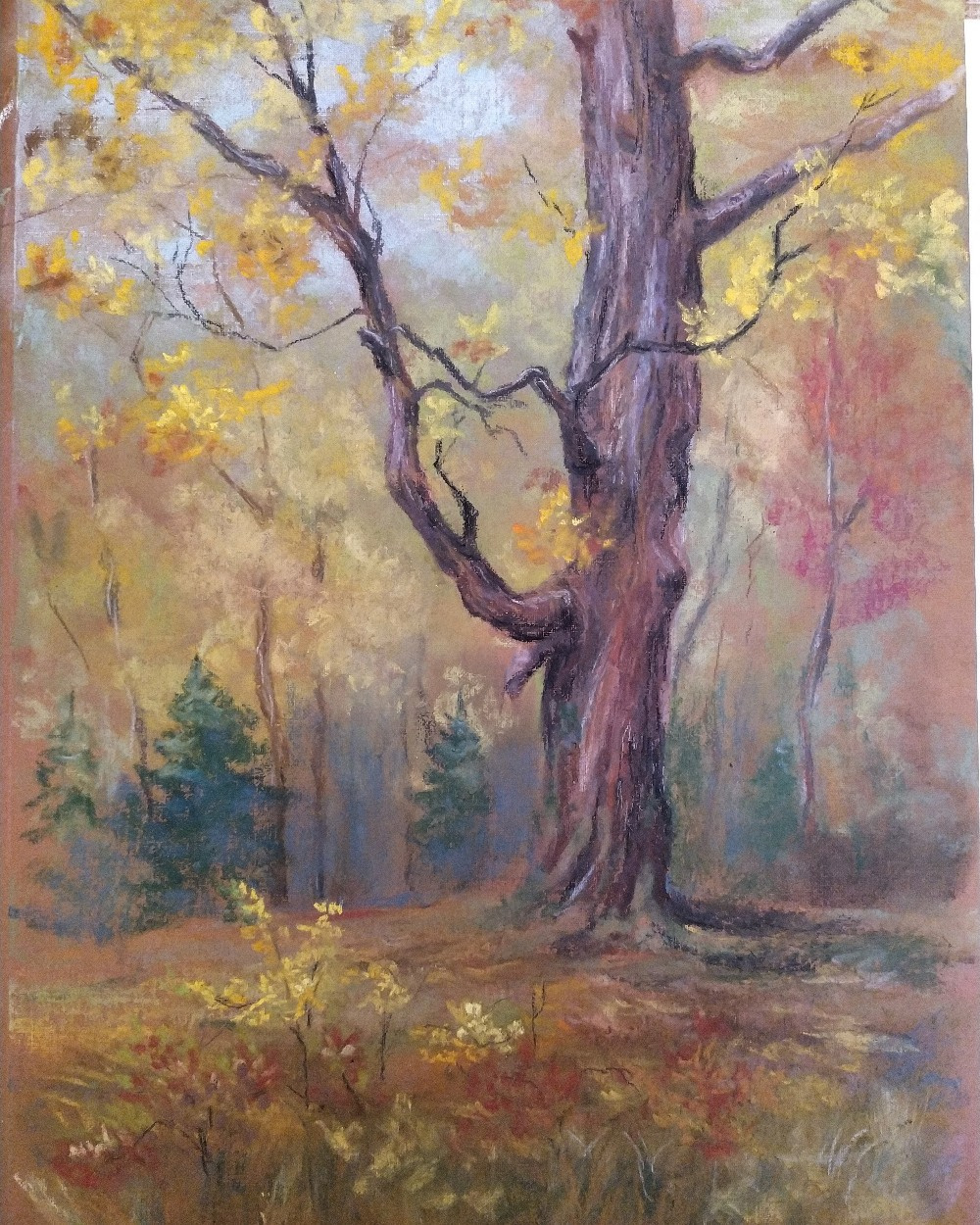 Алина Евгеньевна Шварёва (Галкина). At the old oak