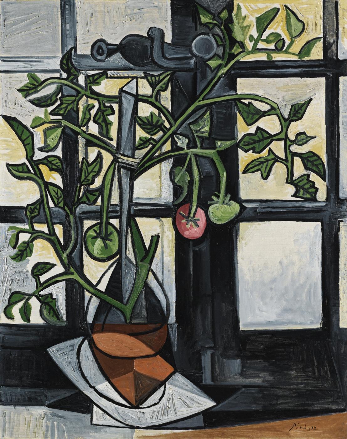 Pablo Picasso. Bush tomatoes