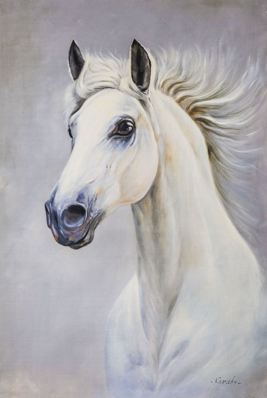 Savely Kamsky. Portrait of a white horse N2