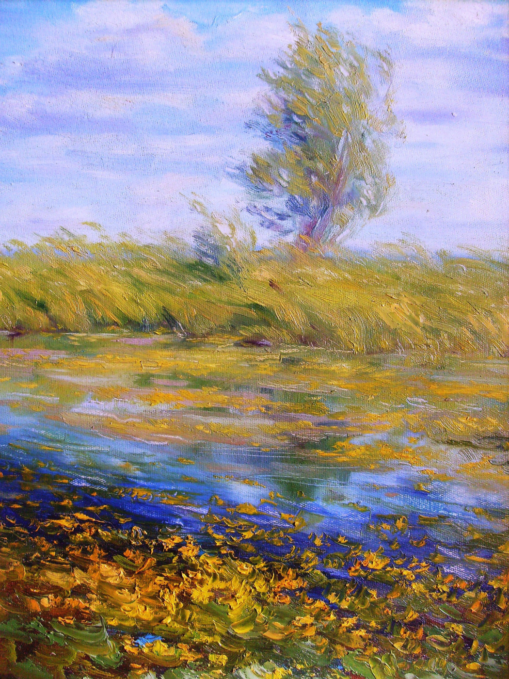"""Konstantin Leonidovich Antipov. ,, Lake with water lilies """""""