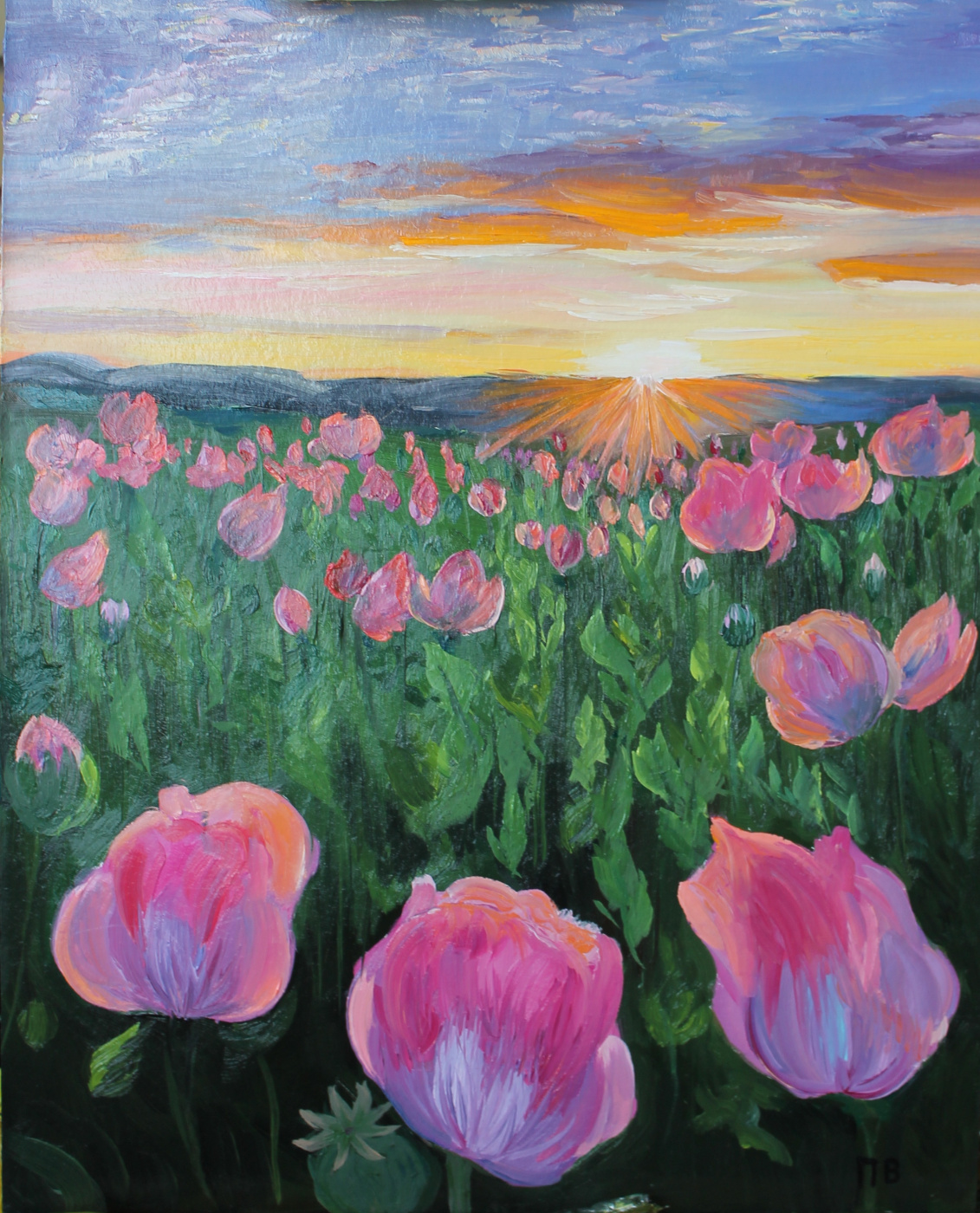 Vasilisa Viktorovna Perestoronina. Pink poppies