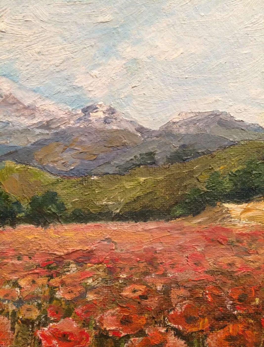 Edward Rudolfovich Votyakov. Turkey. Poppy fields.