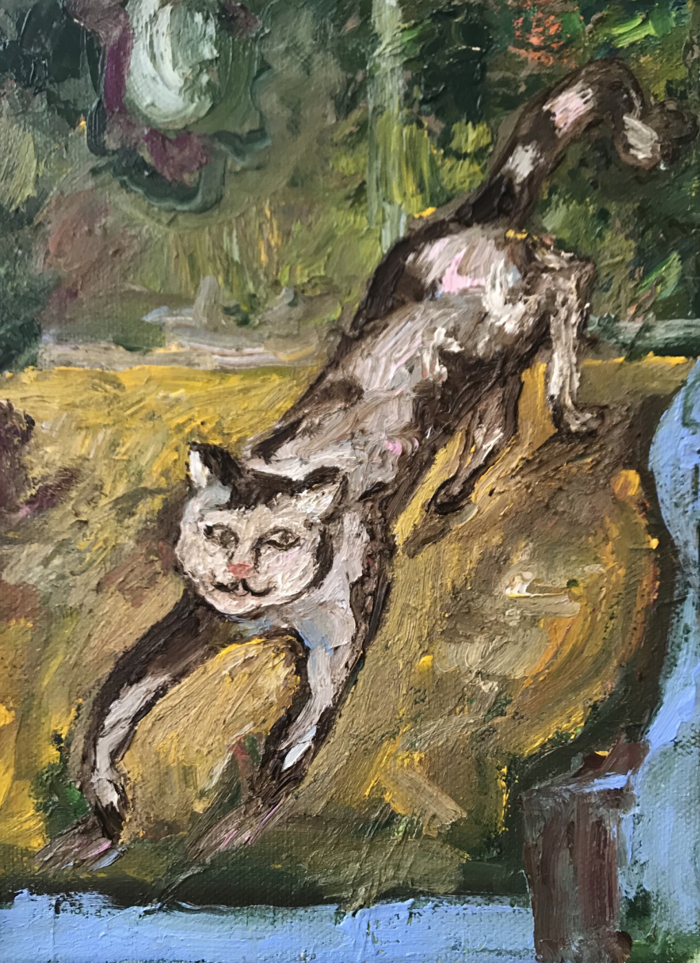 Tatyana Nikolaevna Antonova. Cat