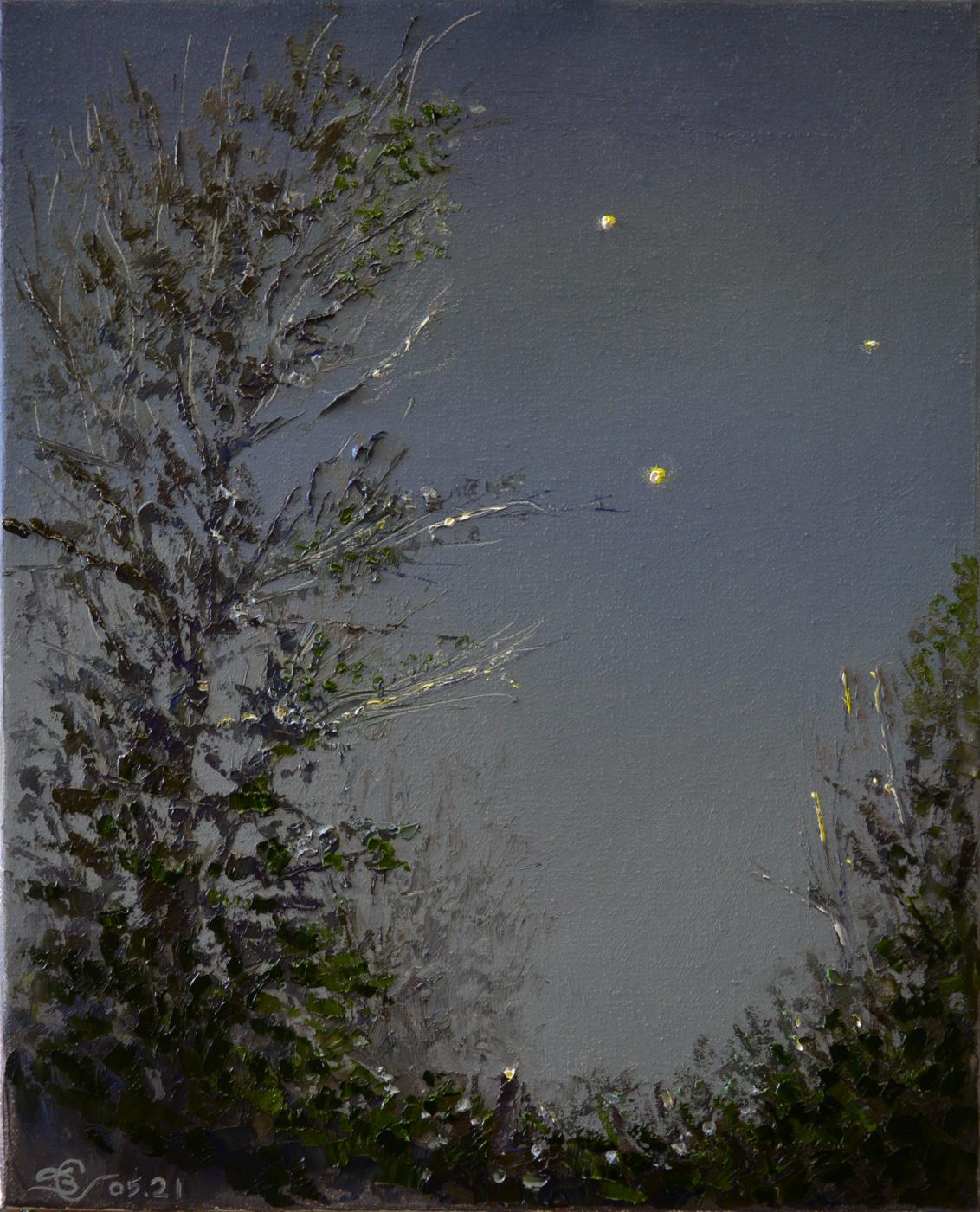 Vadim Anatolyevich Stolyarov. The glare of distant stars