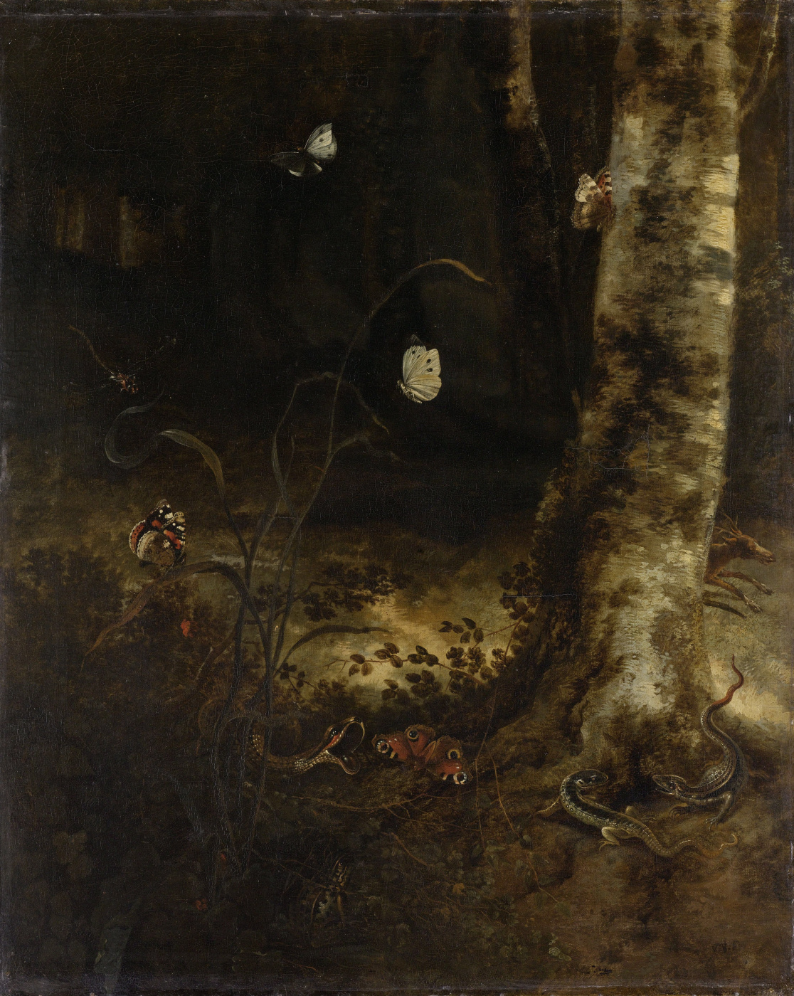 Otto Marceus van Scriec. Underwood with snake, lizards, butterflies and other insects