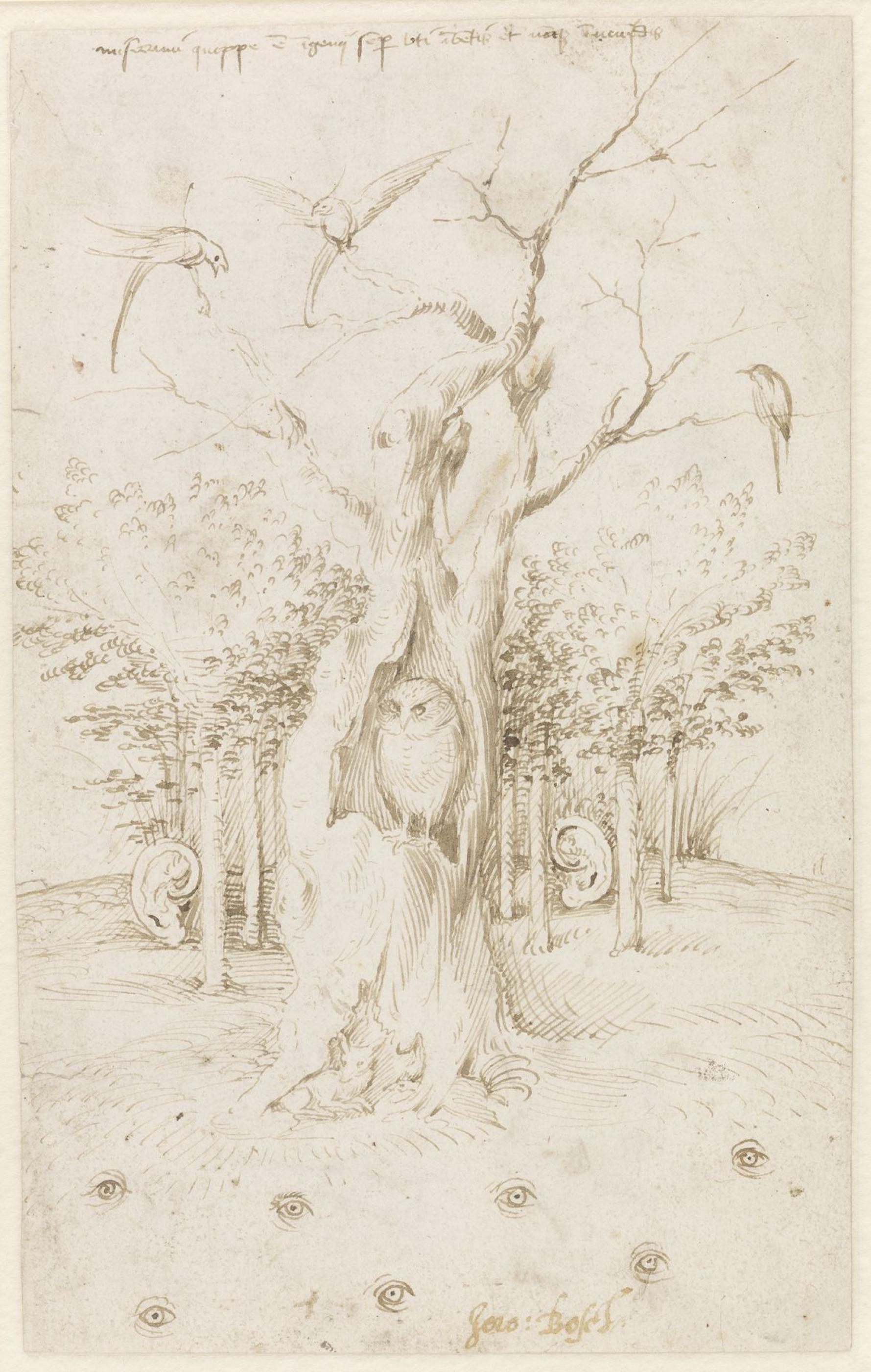 Иероним Босх. Слышащий лес и зрячее поле
