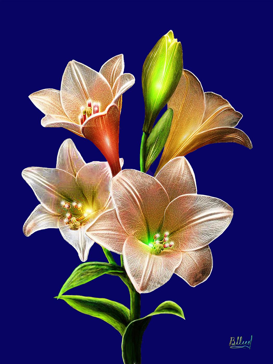 Vasiliy Mishchenko. White lilies colorography