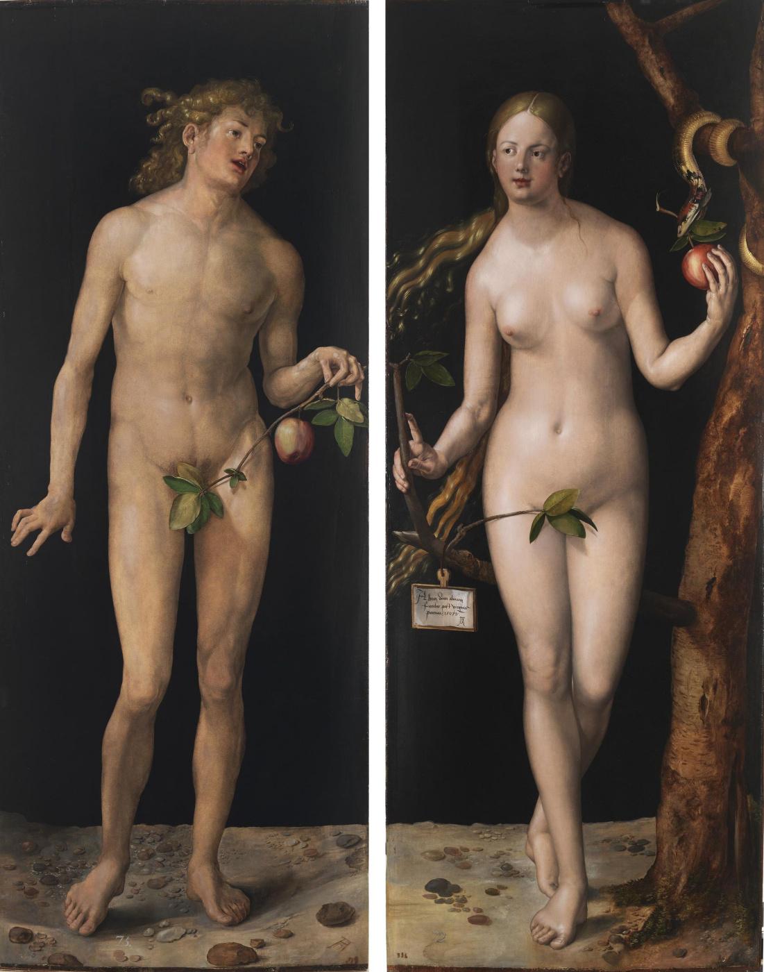 Albrecht Dürer. Adam and eve