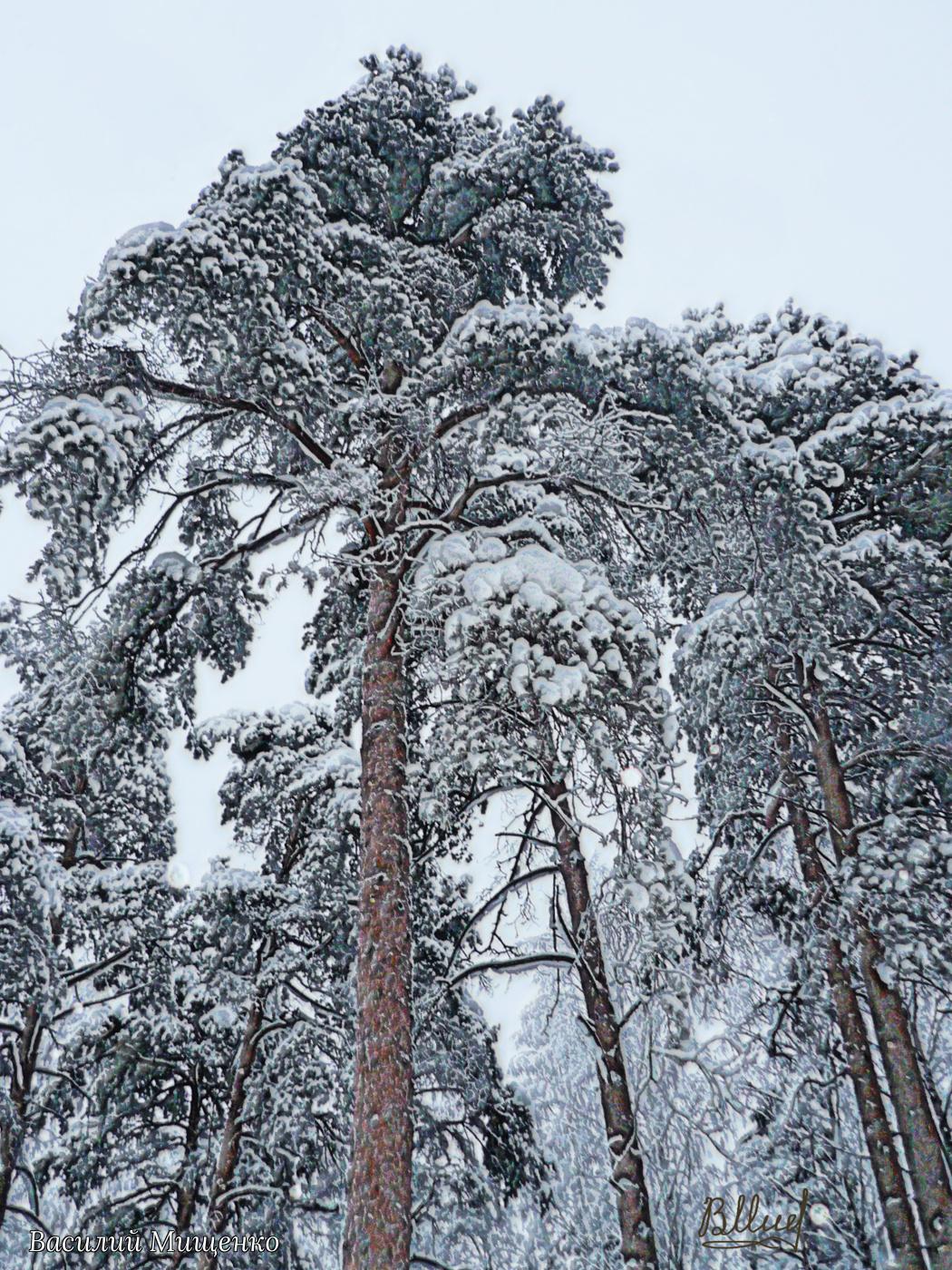 Vasiliy Mishchenko. Зимний пейзаж 0103