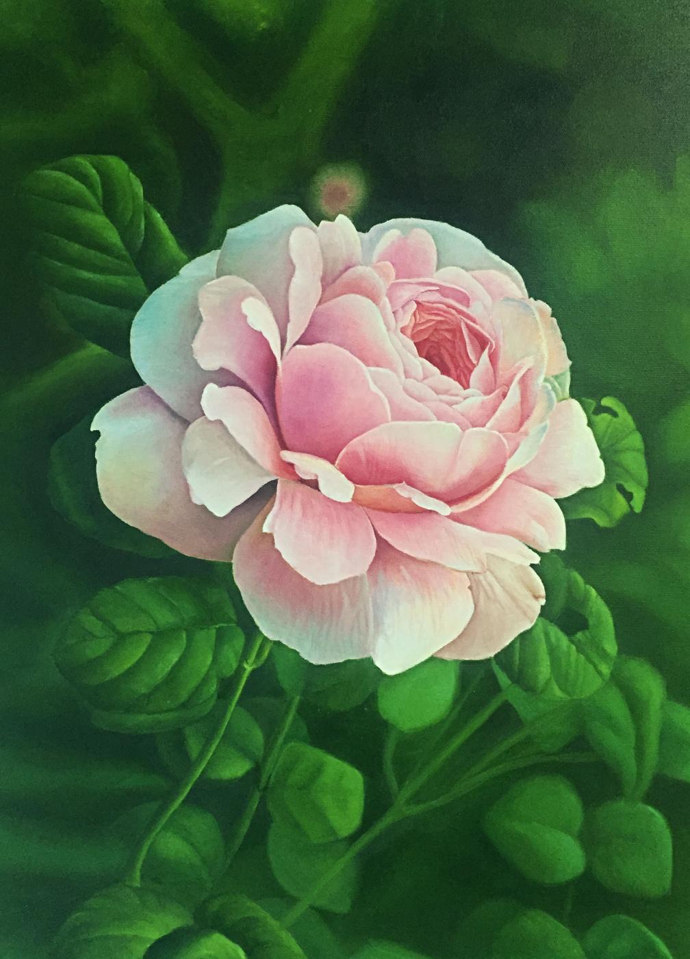 Anastasia Alekhine. Rose flower
