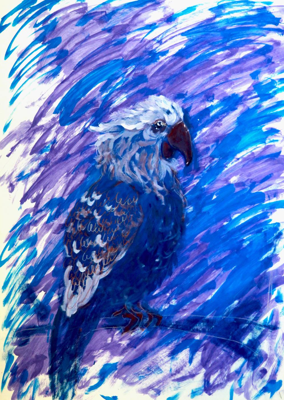 Lenok. The parrot