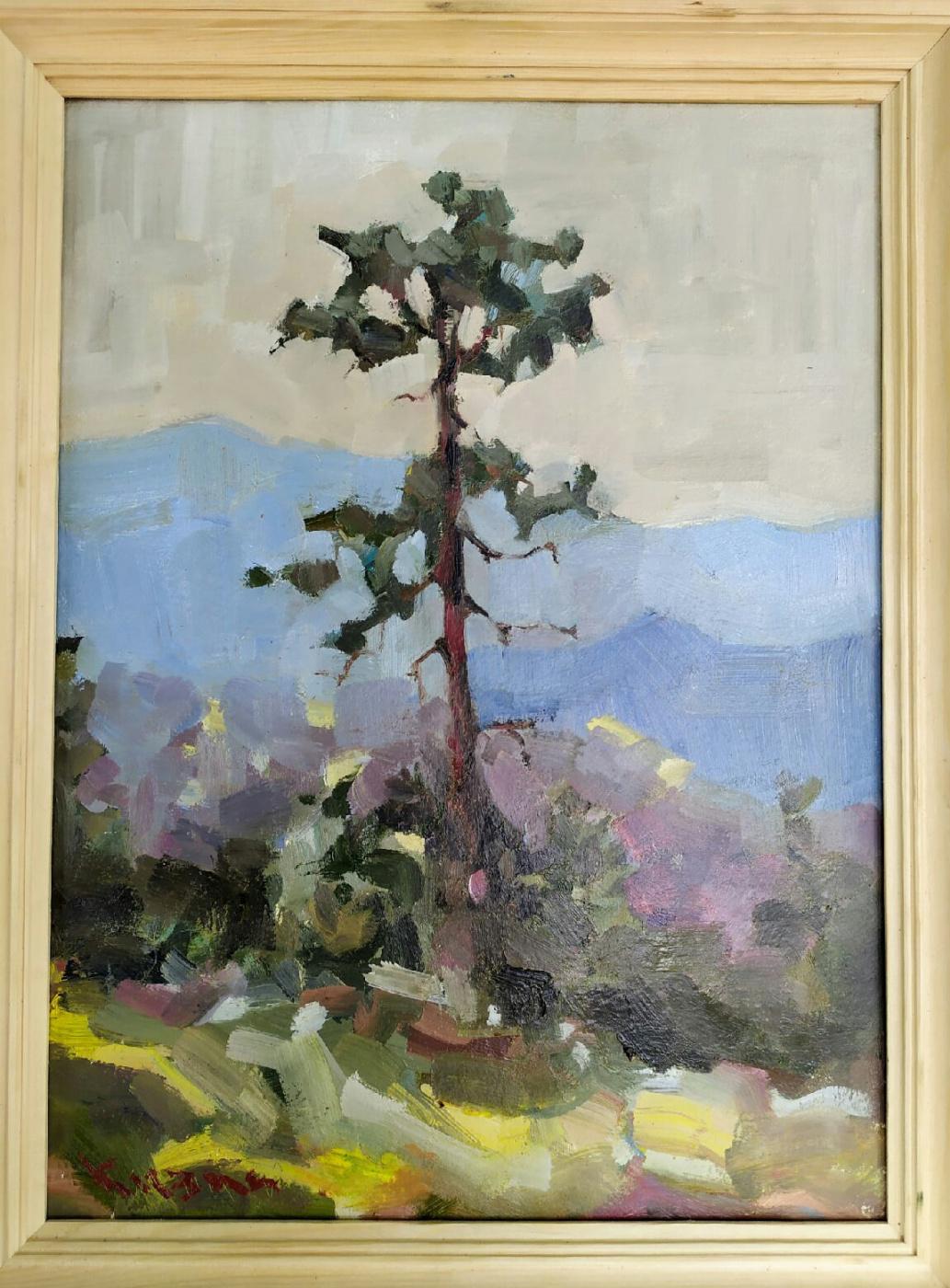 Ivan Olegovich Kuzin. Pine tree in the mountains