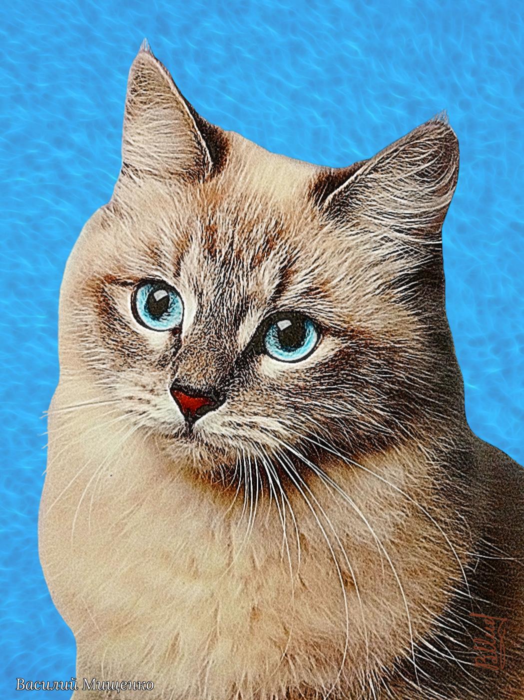 Vasiliy Mishchenko. Cat with blue eyes