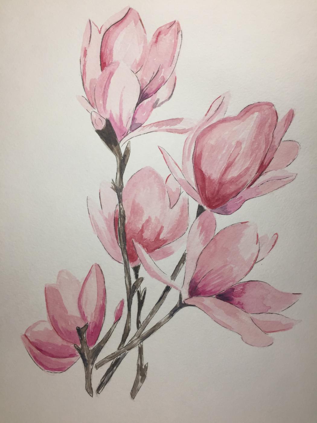 Margo Notfound. Magnolia