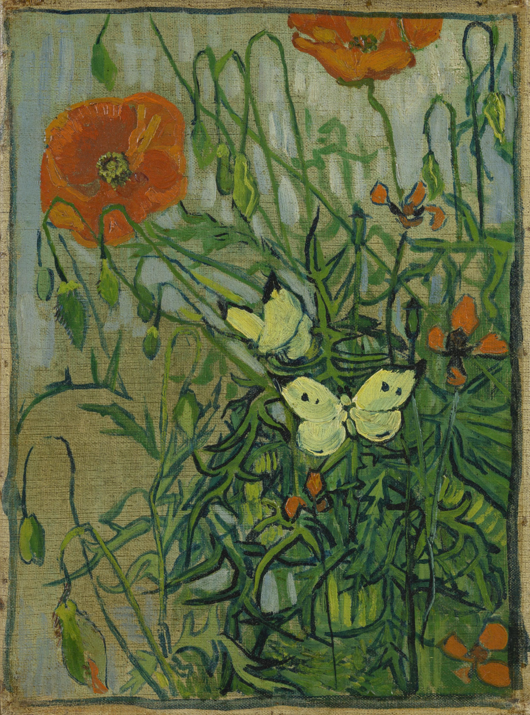 Vincent van Gogh. Poppies and butterflies