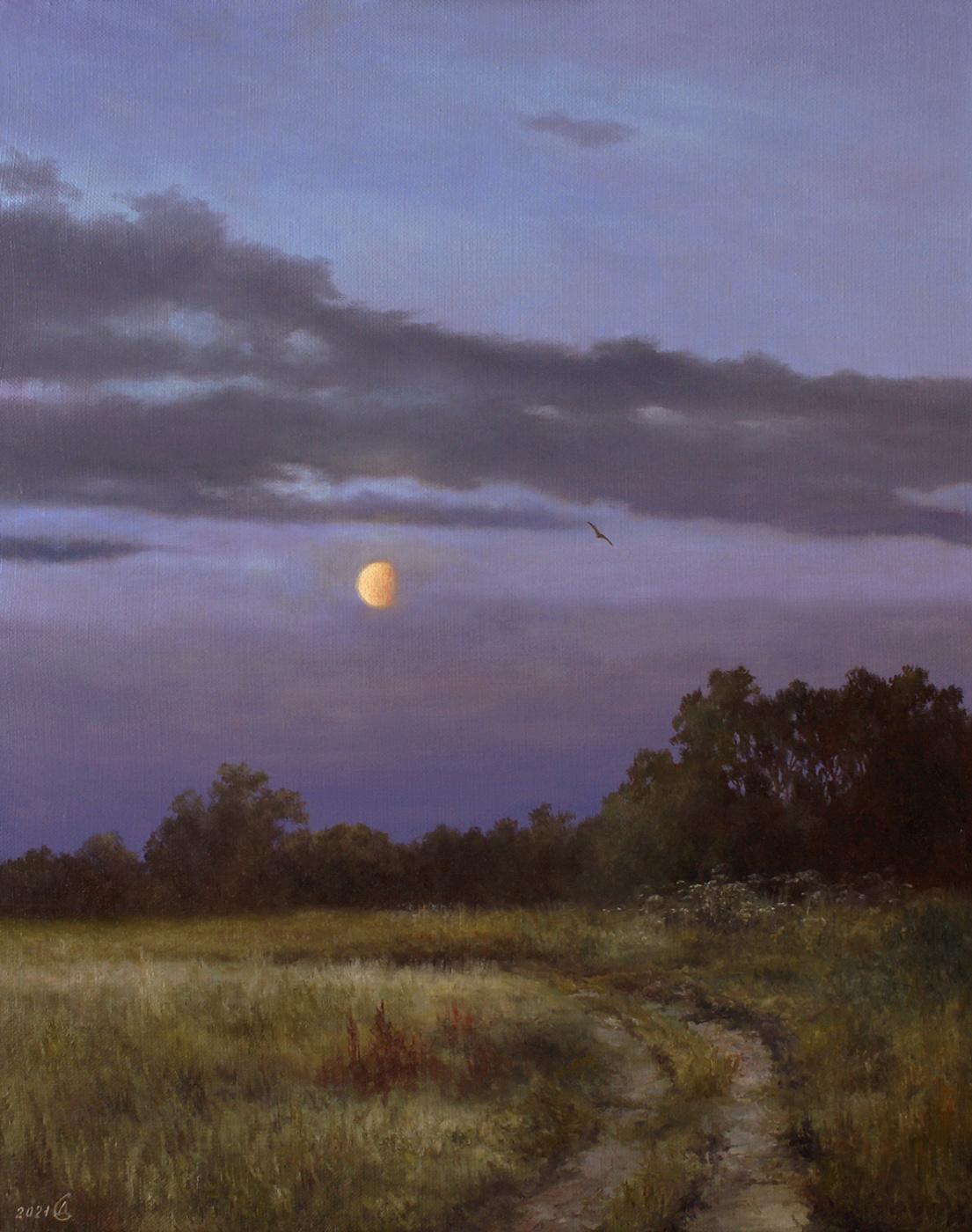 Сергей Владимирович Дорофеев. Lunar twilight
