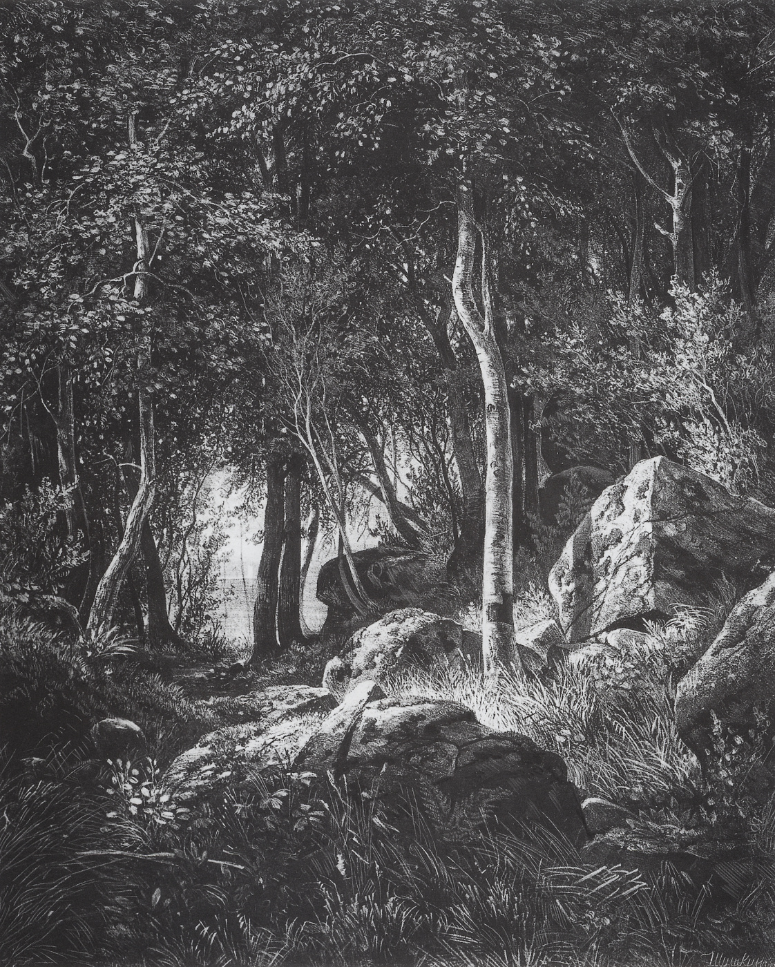 Ivan Shishkin. On the edge of a birch grove