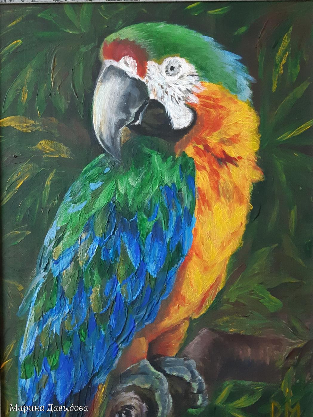 Марина Давыдова. Краски джунглей. Ара