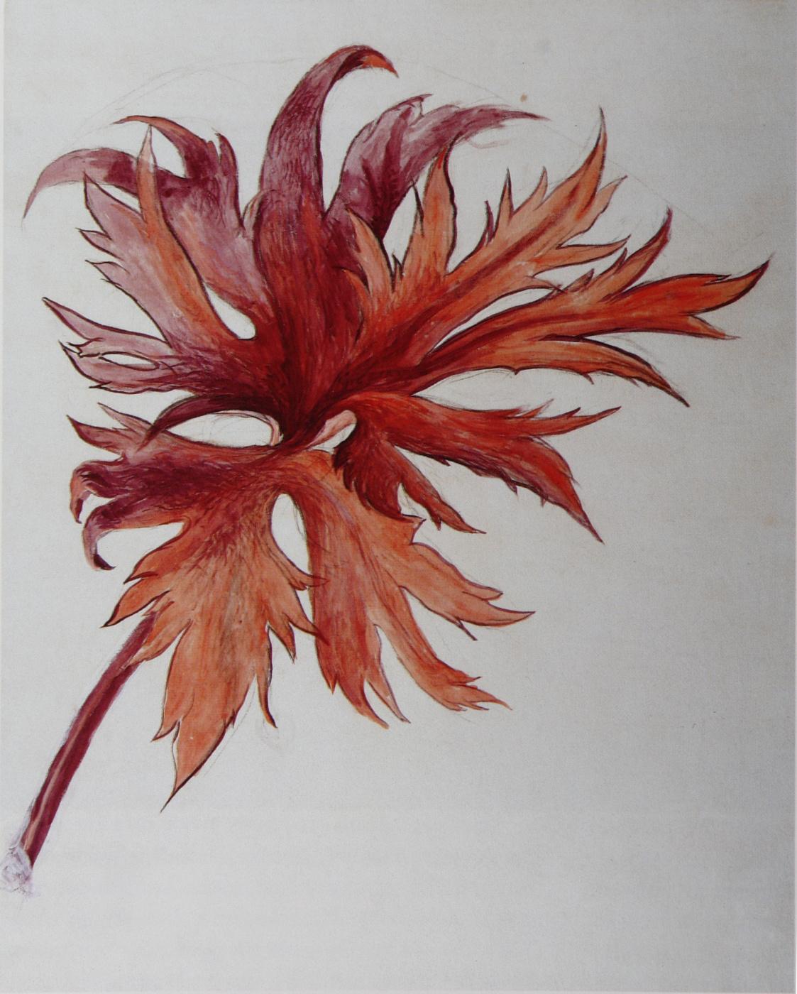 John Ruskin. Orange-purple sheet