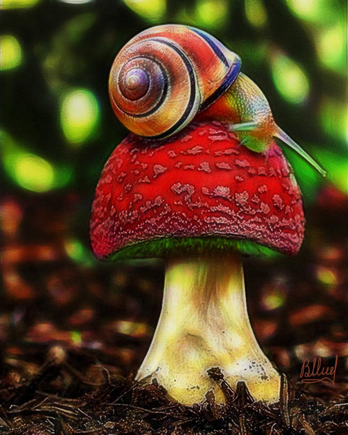 Vasiliy Mishchenko. Red mushroom