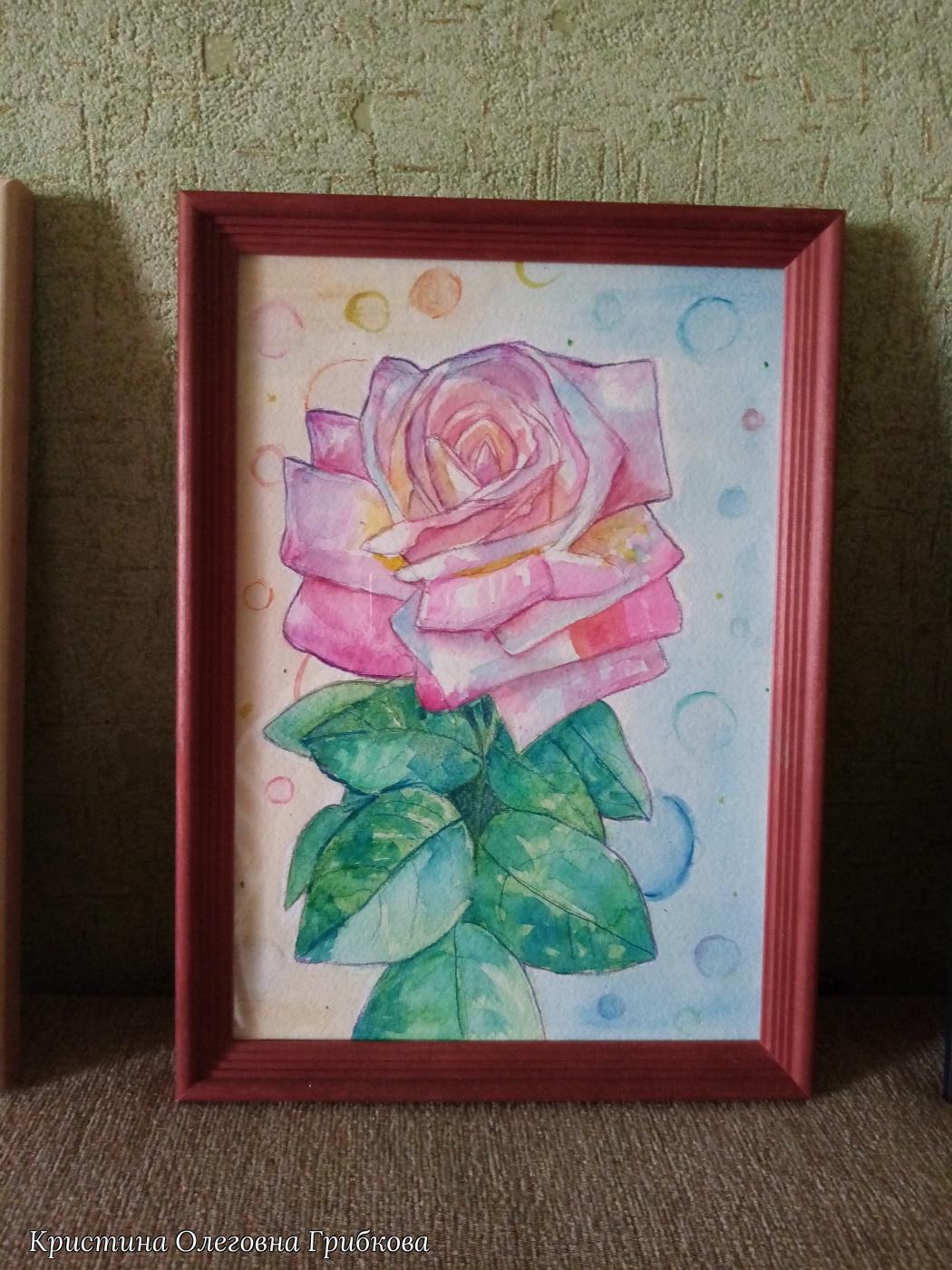 Christina Olegovna Gribkova. Rising rose