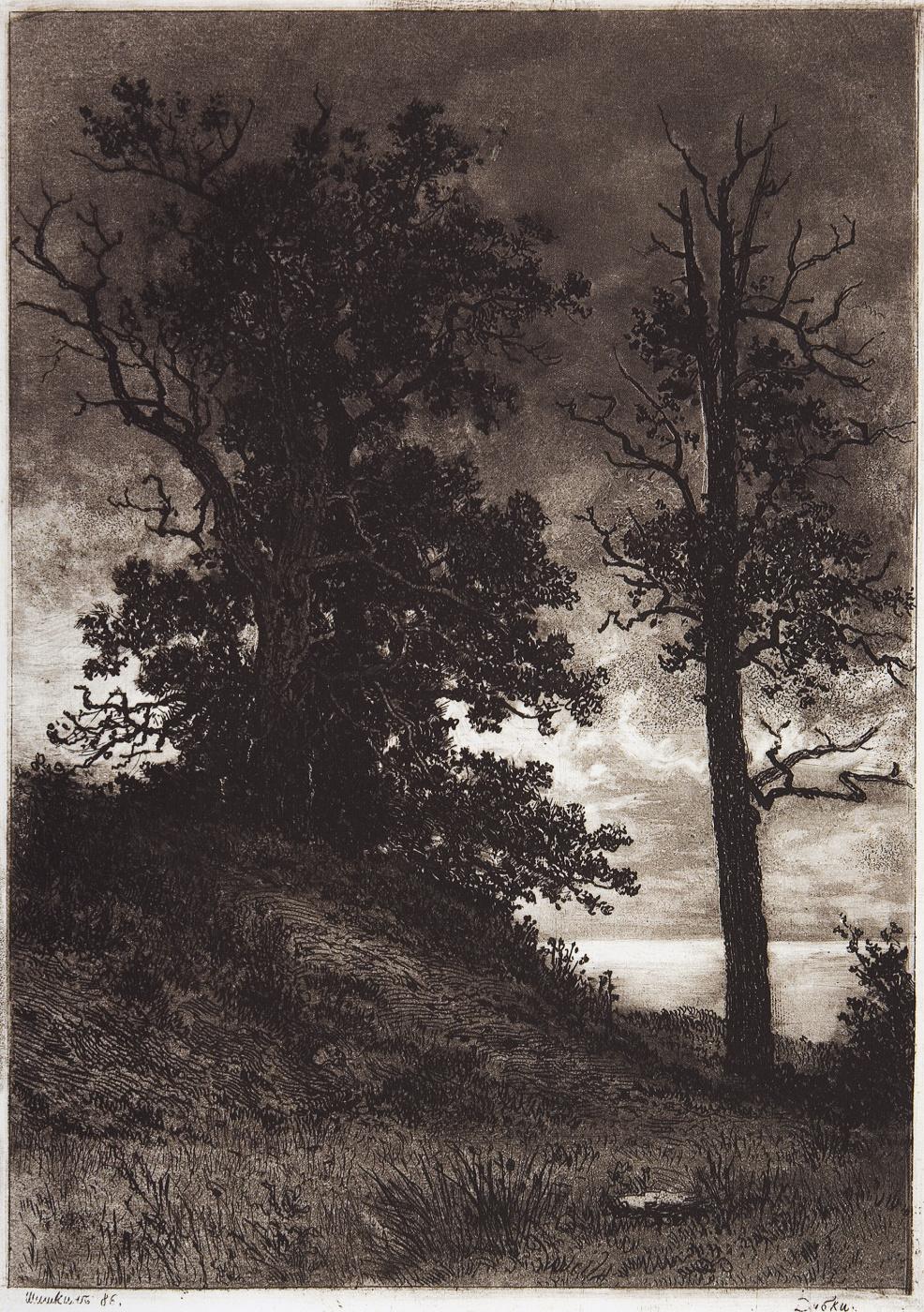 Ivan Ivanovich Shishkin. Oaks