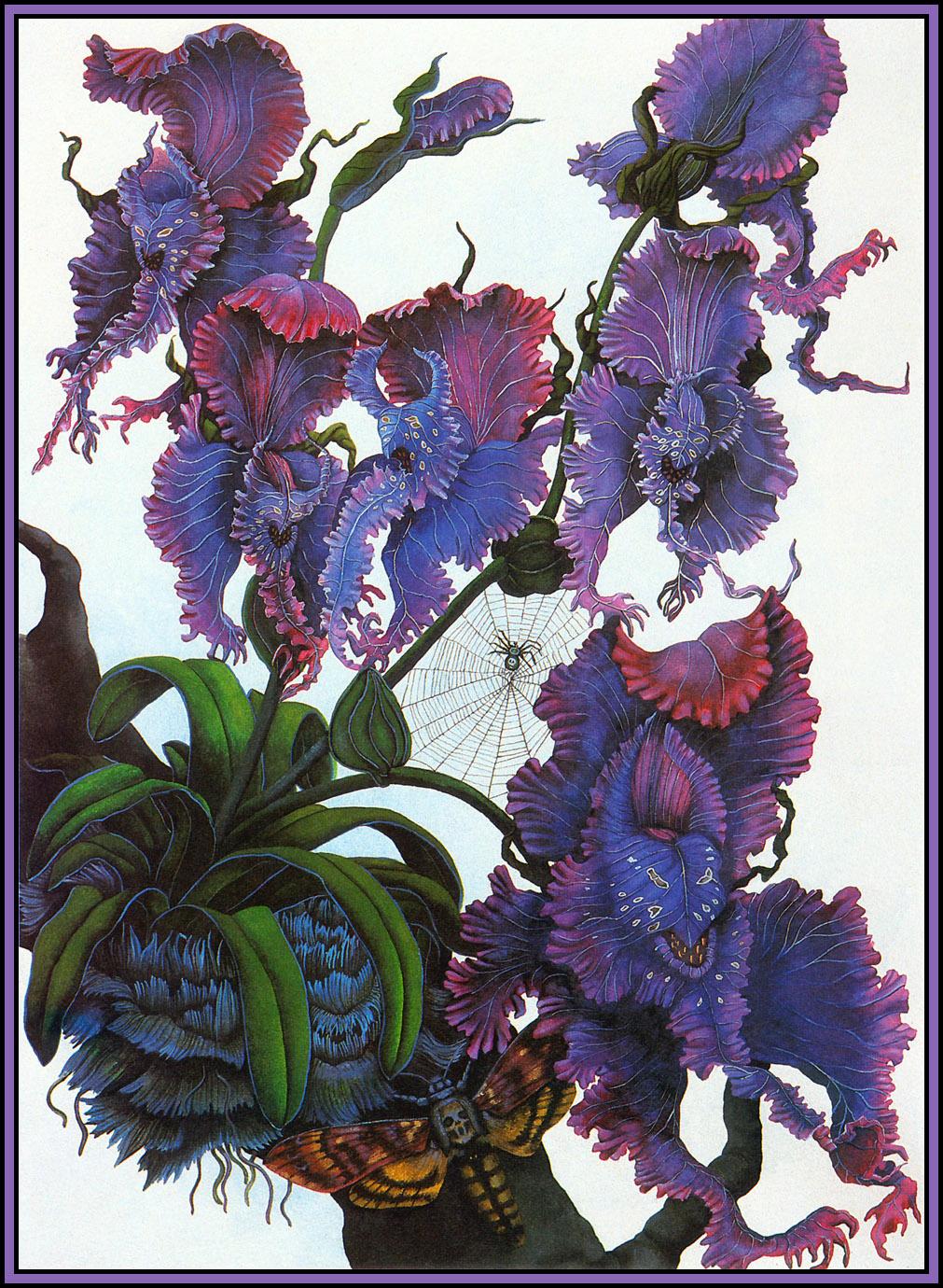 Una Woodruff. Devil's Orchid