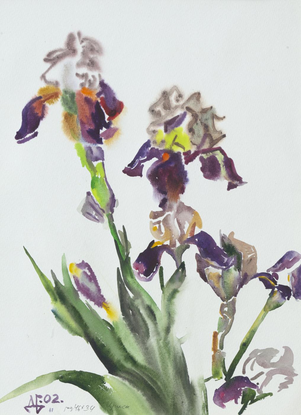 Дурды Байрамович Байрамов. Irises