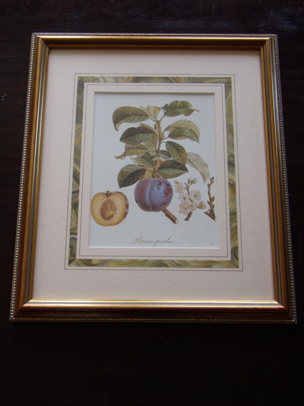 Уильям Гукер Джексон. Hooker's Fruits.