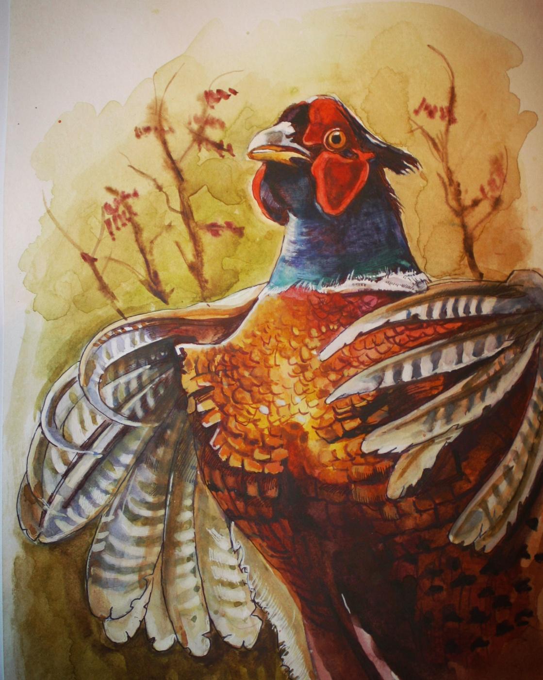 Veronica Oparina. Pheasant