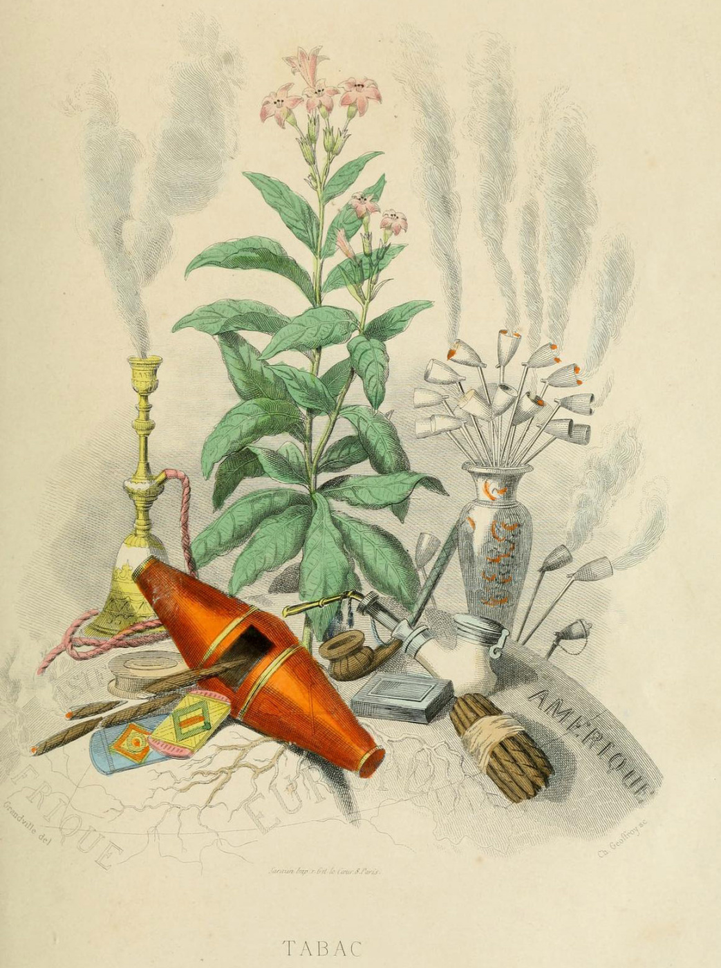 """Jean Inias Isidore (Gerard) Granville. Tobacco. The series """"Animate Flowers"""""""