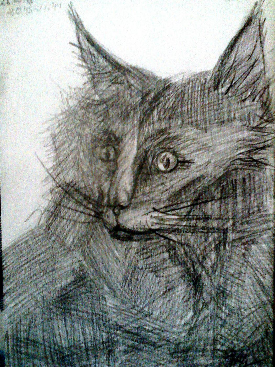 Julia Sergeevna Bochkareva. Cat Behemoth