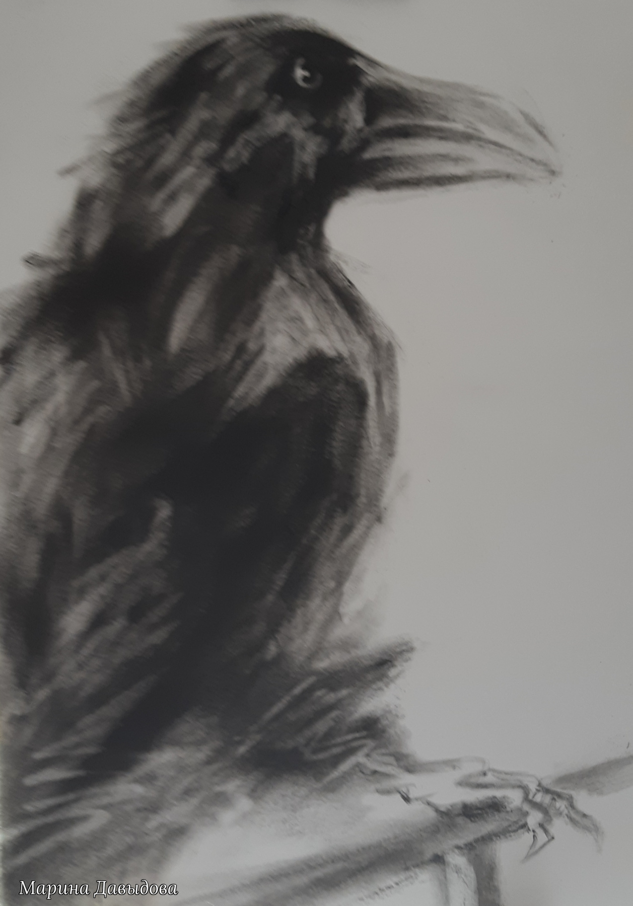 Марина Давыдова. Ворон